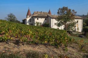 Région viticole : Beaujolais