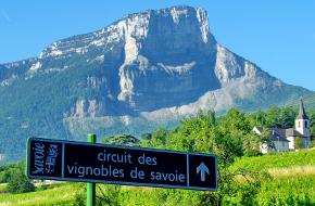 Région viticole : Savoie / Bugey / Côteaux Alpins