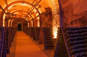 Région viticole : Champagne