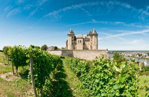 Région viticole : Loire