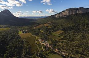 Région viticole : Languedoc-Roussillon