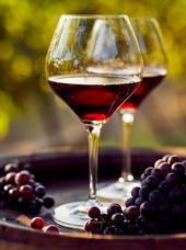 Vigneron : DOMAINE GANEVAT